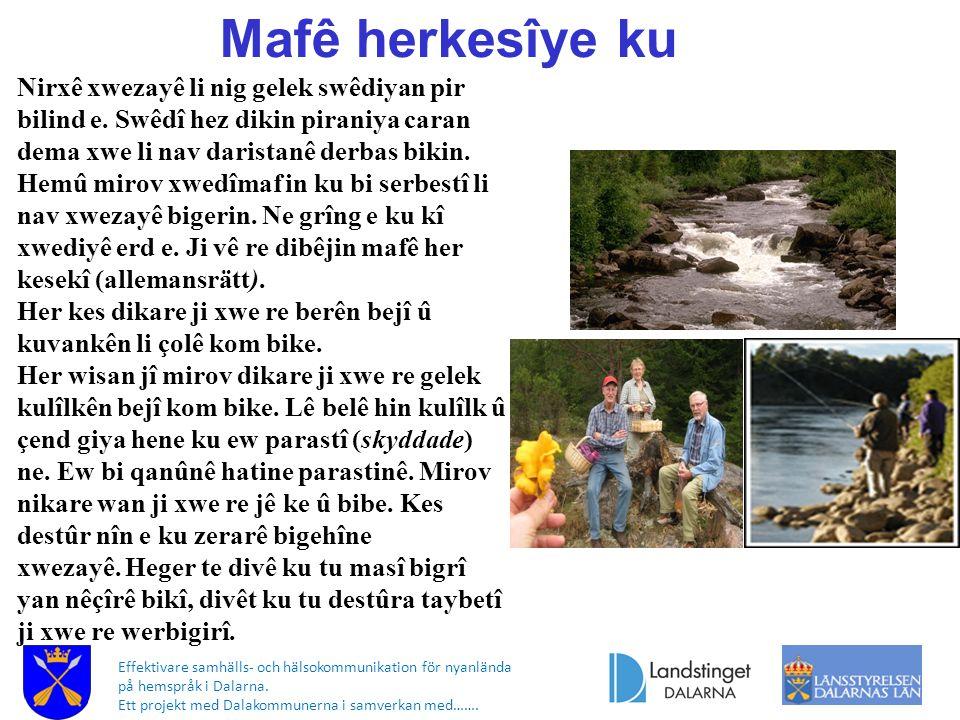 Effektivare samhälls- och hälsokommunikation för nyanlända på hemspråk i Dalarna. Ett projekt med Dalakommunerna i samverkan med……. Mafê herkesîye ku
