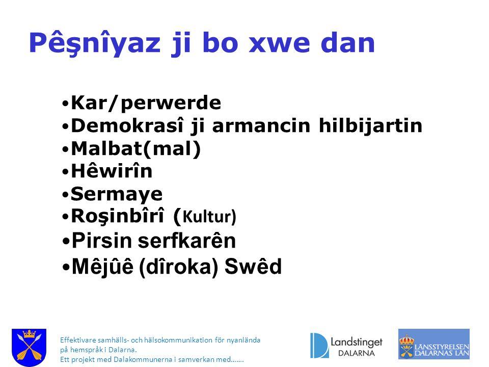 Effektivare samhälls- och hälsokommunikation för nyanlända på hemspråk i Dalarna. Ett projekt med Dalakommunerna i samverkan med……. Pêşnîyaz ji bo xwe
