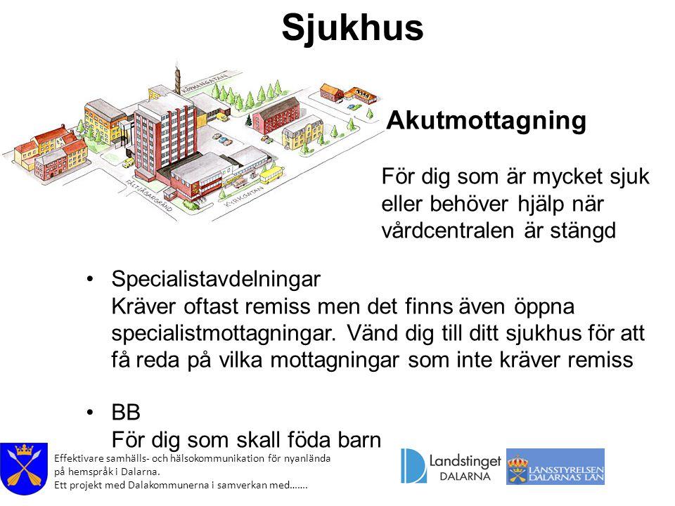 Effektivare samhälls- och hälsokommunikation för nyanlända på hemspråk i Dalarna. Ett projekt med Dalakommunerna i samverkan med……. Sjukhus Specialist