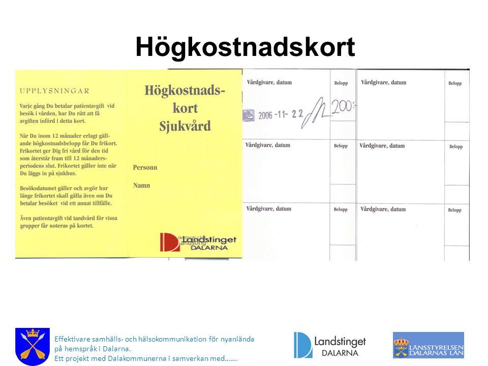 Högkostnadskort Effektivare samhälls- och hälsokommunikation för nyanlända på hemspråk i Dalarna. Ett projekt med Dalakommunerna i samverkan med…….