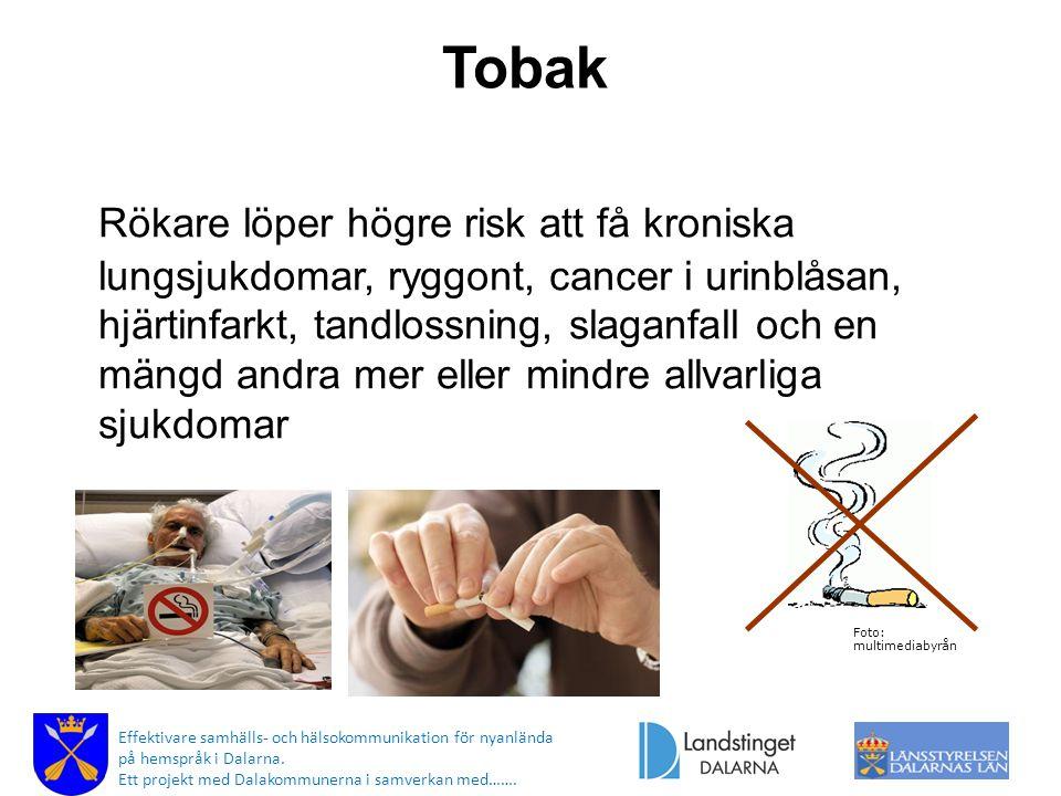 Tobak Rökare löper högre risk att få kroniska lungsjukdomar, ryggont, cancer i urinblåsan, hjärtinfarkt, tandlossning, slaganfall och en mängd andra m