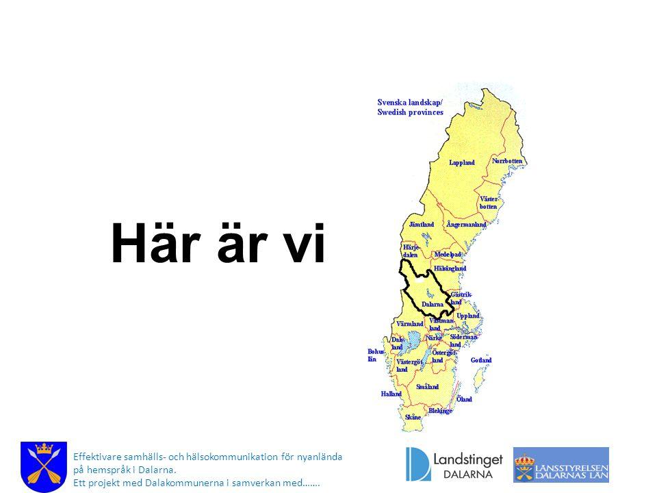 Här är vi Effektivare samhälls- och hälsokommunikation för nyanlända på hemspråk i Dalarna. Ett projekt med Dalakommunerna i samverkan med…….