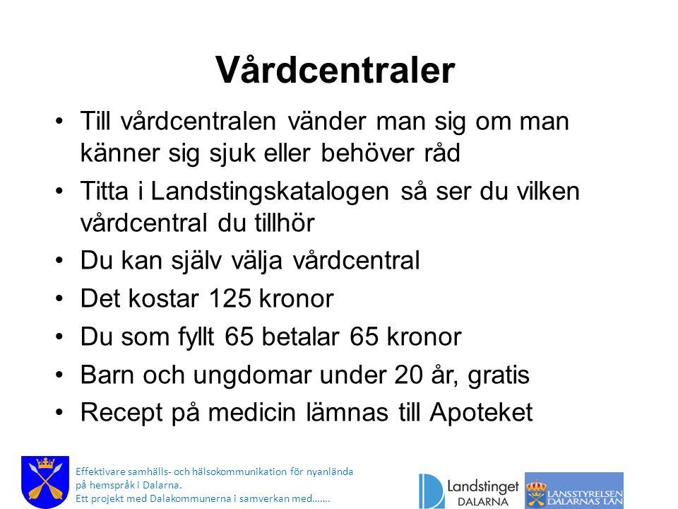 Högkostnadskort Effektivare samhälls- och hälsokommunikation för nyanlända på hemspråk i Dalarna.