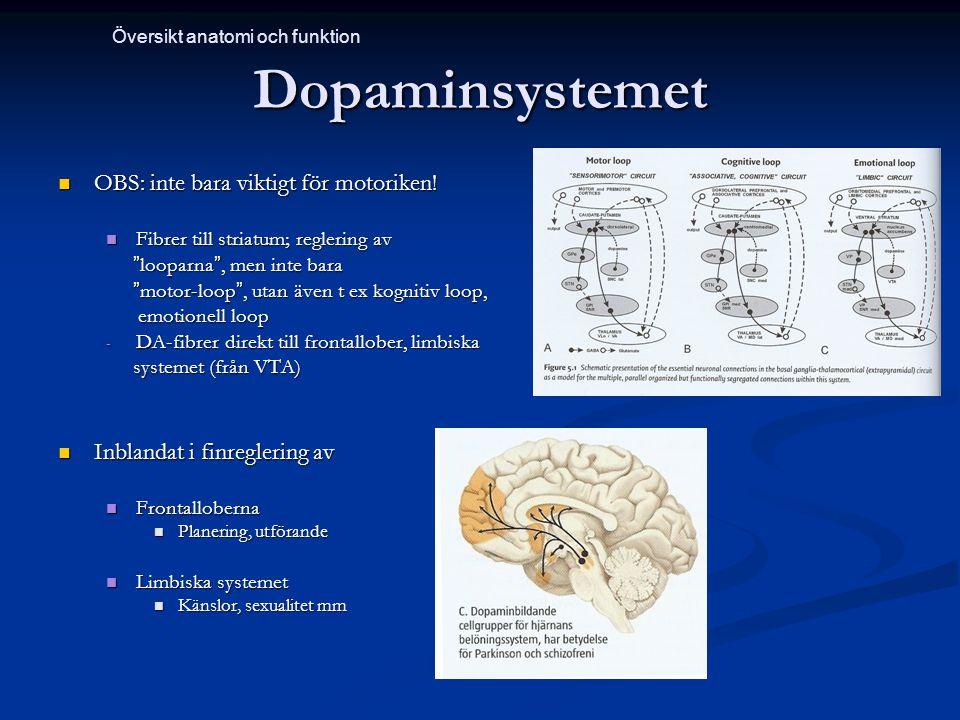 Dopaminsystemet OBS: inte bara viktigt för motoriken! OBS: inte bara viktigt för motoriken! Fibrer till striatum; reglering av Fibrer till striatum; r