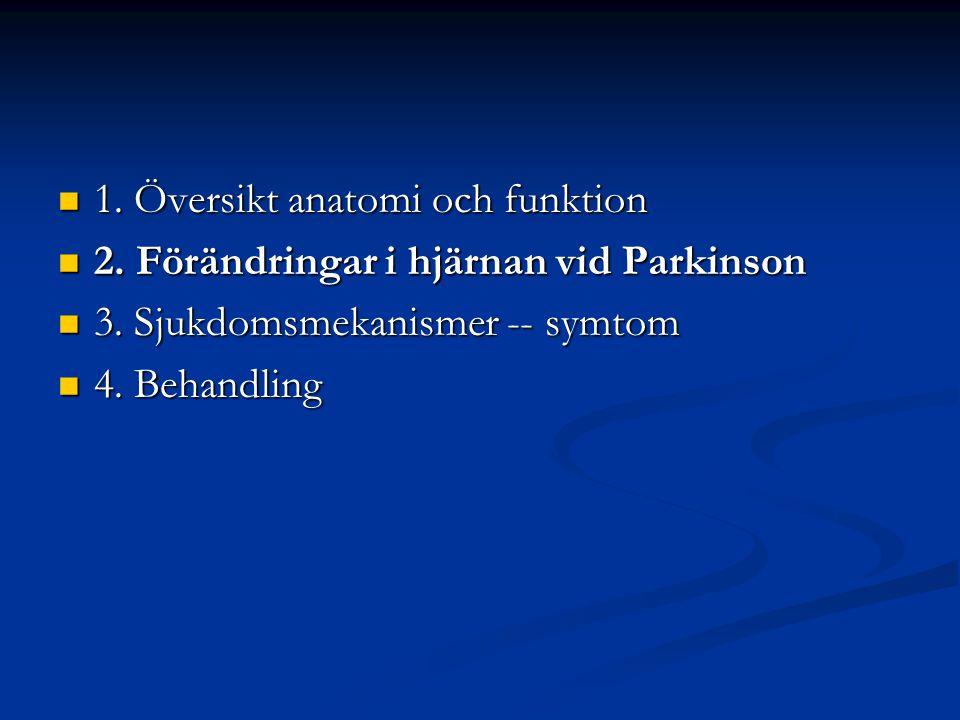 1. Översikt anatomi och funktion 1. Översikt anatomi och funktion 2. Förändringar i hjärnan vid Parkinson 2. Förändringar i hjärnan vid Parkinson 3. S