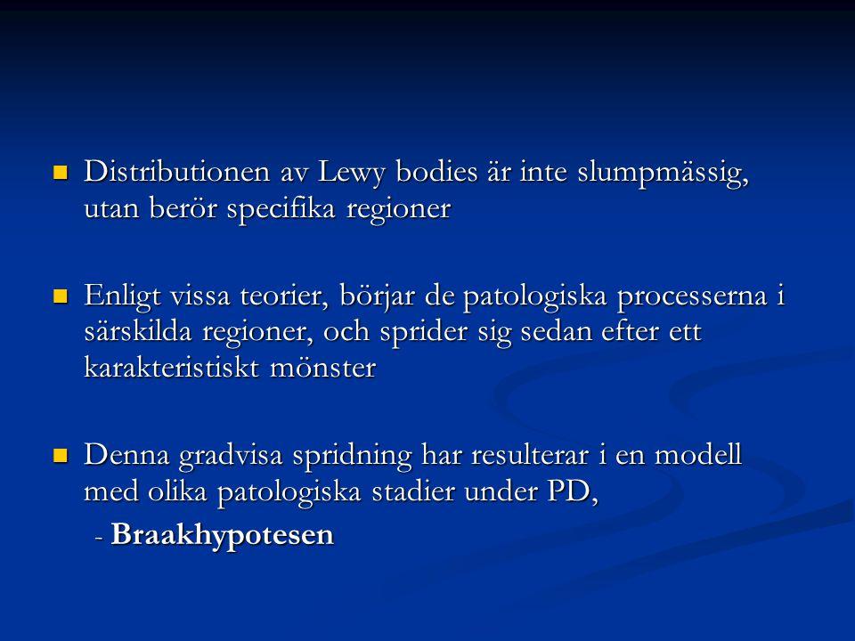 Distributionen av Lewy bodies är inte slumpmässig, utan berör specifika regioner Distributionen av Lewy bodies är inte slumpmässig, utan berör specifi