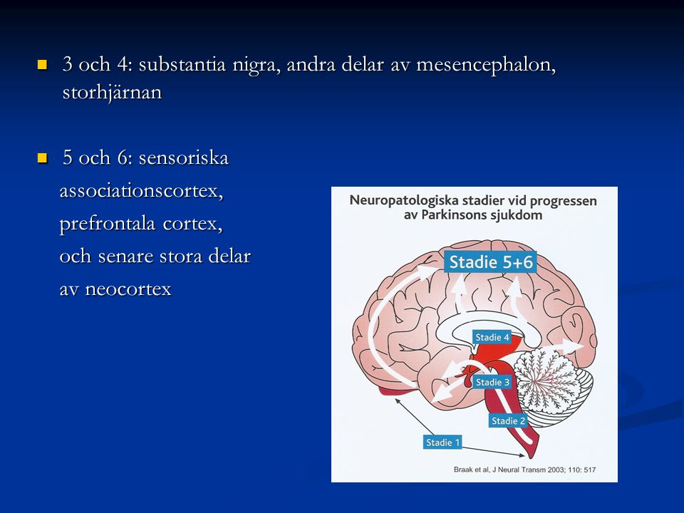 3 och 4: substantia nigra, andra delar av mesencephalon, storhjärnan 3 och 4: substantia nigra, andra delar av mesencephalon, storhjärnan 5 och 6: sen