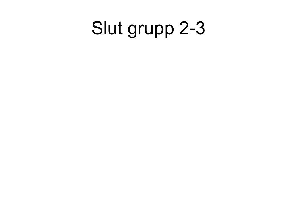 Slut grupp 2-3