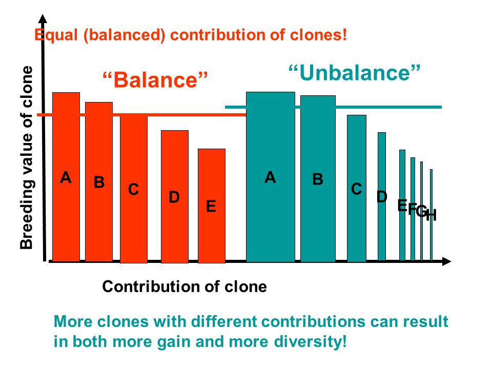 Breeding value of clone Contribution of clone A Balance More clones with different contributions can result in both more gain and more diversity.