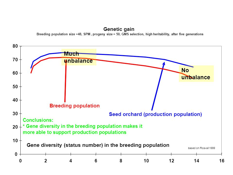 Genetic gain Breeding population size =48, SPM, progeny size = 50, GMS selection, high heritability, after five generations 0 10 20 30 40 50 60 70 80