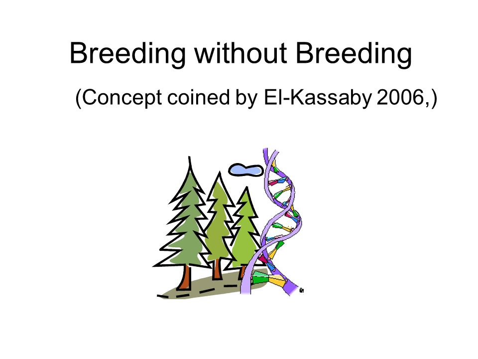 The Swedish model In the following, many of presented figures intend to be relevant for Sweden or the Swedish breeding strategy; Heading for a number of long term breeding populations , each of size 50; Heading for balance: Within family selection; Each parent get two full sib families; One selection per family.