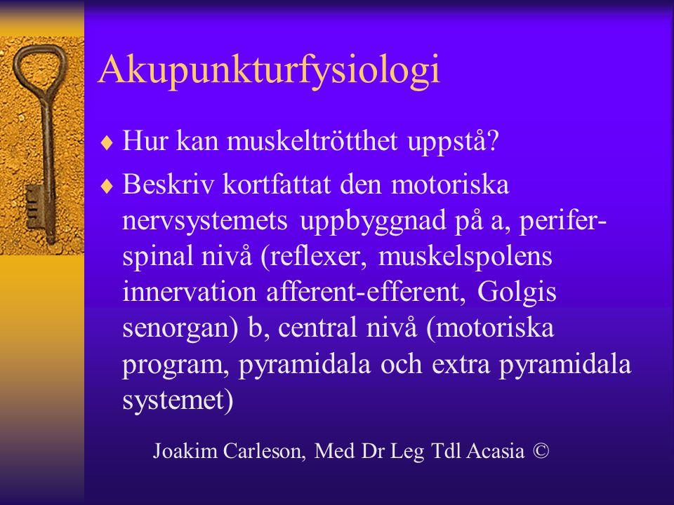 Akupunkturfysiologi  Hur kan muskeltrötthet uppstå?  Beskriv kortfattat den motoriska nervsystemets uppbyggnad på a, perifer- spinal nivå (reflexer,