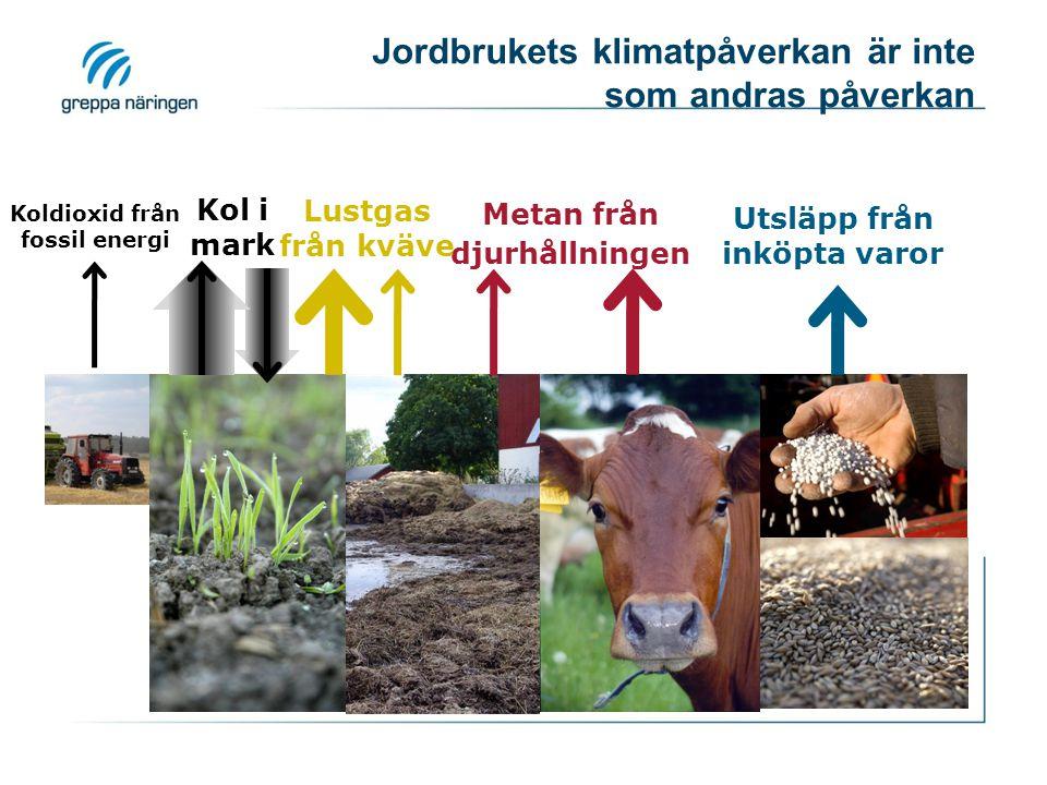 Jordbrukets klimatpåverkan är inte som andras påverkan Metan från djurhållningen Lustgas från kväve Kol i mark Koldioxid från fossil energi Utsläpp från inköpta varor