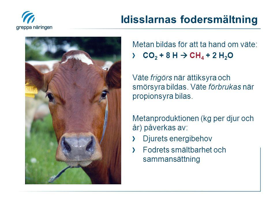 Stallgödselhantering Metan: Bildas i syrefri miljö.