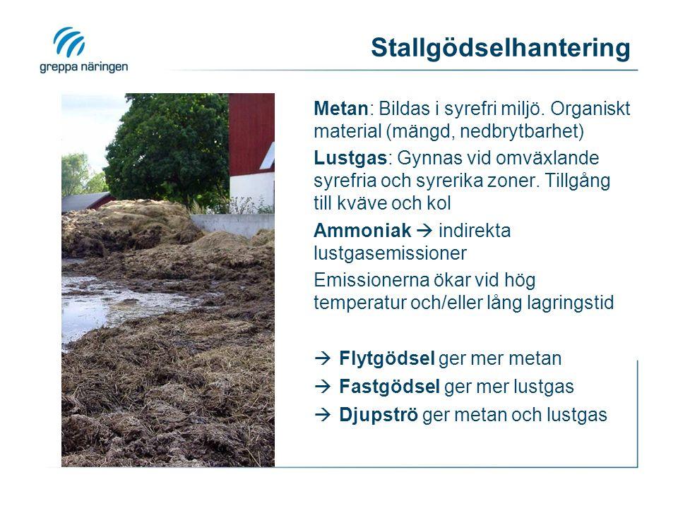 Lustgas från mark Bildas i (nitrifikations-) och denitrifikationsprocessen.