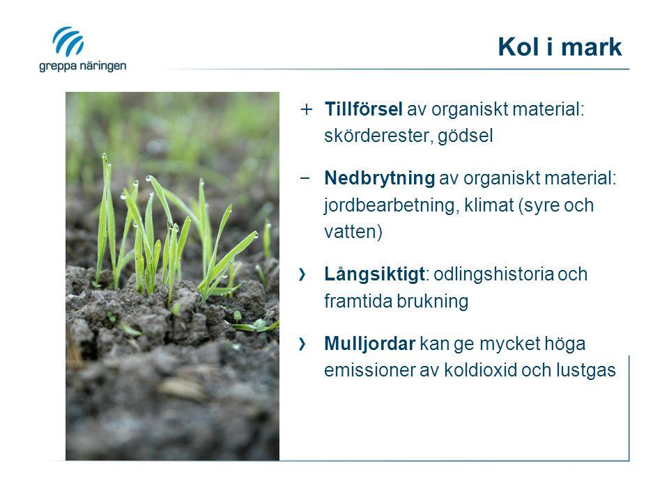 Kol i mark + Tillförsel av organiskt material: skörderester, gödsel – Nedbrytning av organiskt material: jordbearbetning, klimat (syre och vatten) Långsiktigt: odlingshistoria och framtida brukning Mulljordar kan ge mycket höga emissioner av koldioxid och lustgas