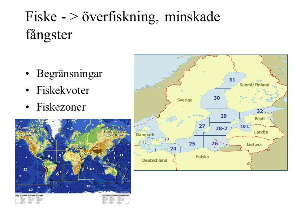 Fiske - > överfiskning, minskade fångster Begränsningar Fiskekvoter Fiskezoner