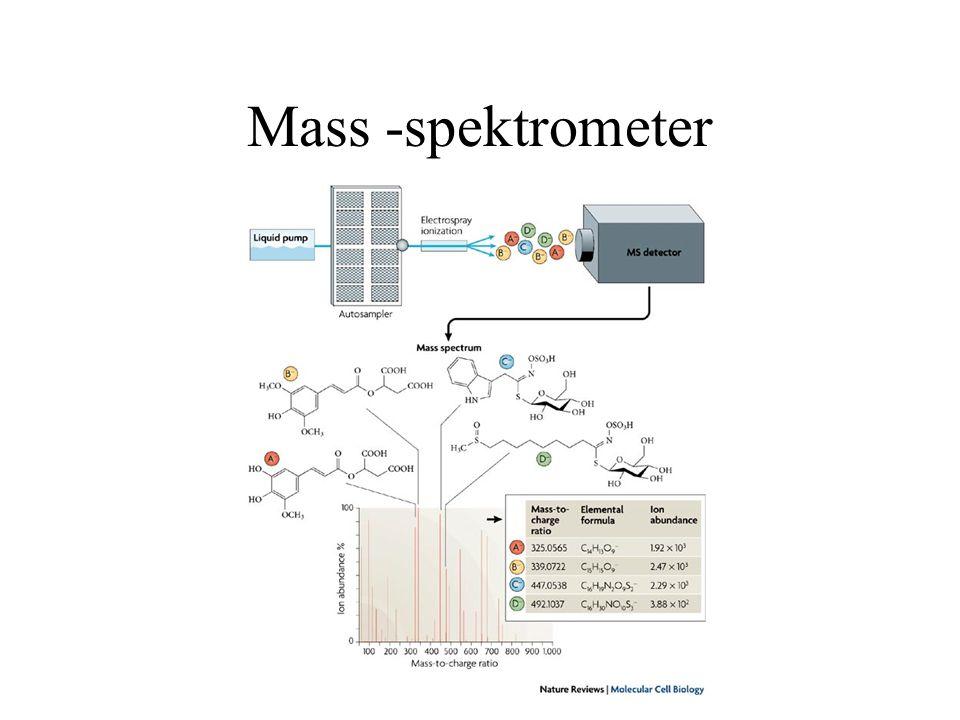 Mass -spektrometer