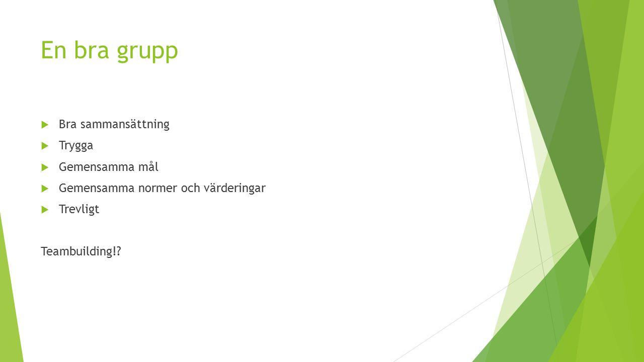 En bra grupp  Bra sammansättning  Trygga  Gemensamma mål  Gemensamma normer och värderingar  Trevligt Teambuilding!?