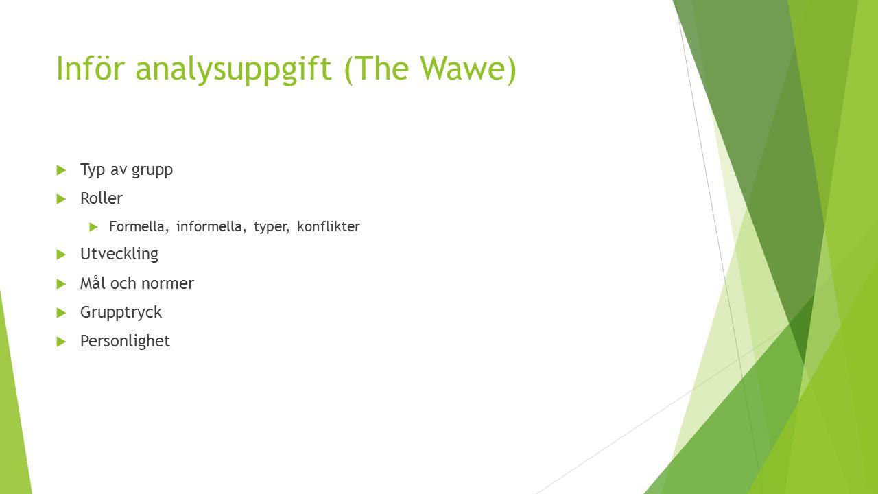 Inför analysuppgift (The Wawe)  Typ av grupp  Roller  Formella, informella, typer, konflikter  Utveckling  Mål och normer  Grupptryck  Personli