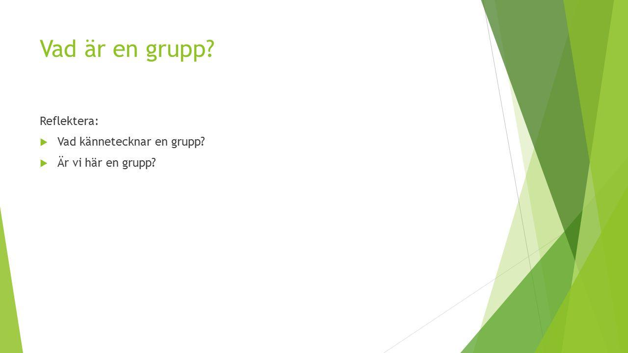 Vad är en grupp? Reflektera:  Vad kännetecknar en grupp?  Är vi här en grupp?
