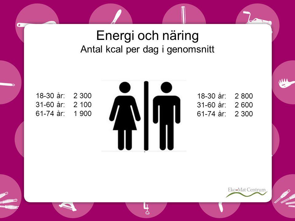 Energi och näring Antal kcal per dag i genomsnitt 18-30 år: 2 300 31-60 år: 2 100 61-74 år: 1 900 18-30 år: 2 800 31-60 år: 2 600 61-74 år: 2 300