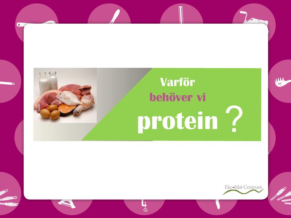 Varför behöver vi protein ?