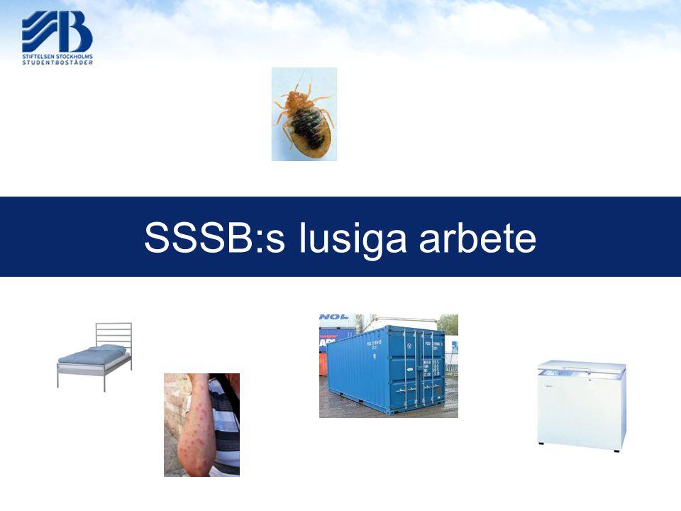 SSSB:s lusiga arbete