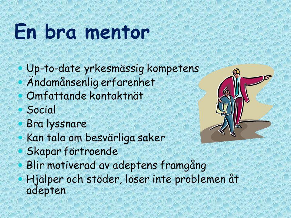 En bra mentor Up-to-date yrkesmässig kompetens Ändamånsenlig erfarenhet Omfattande kontaktnät Social Bra lyssnare Kan tala om besvärliga saker Skapar
