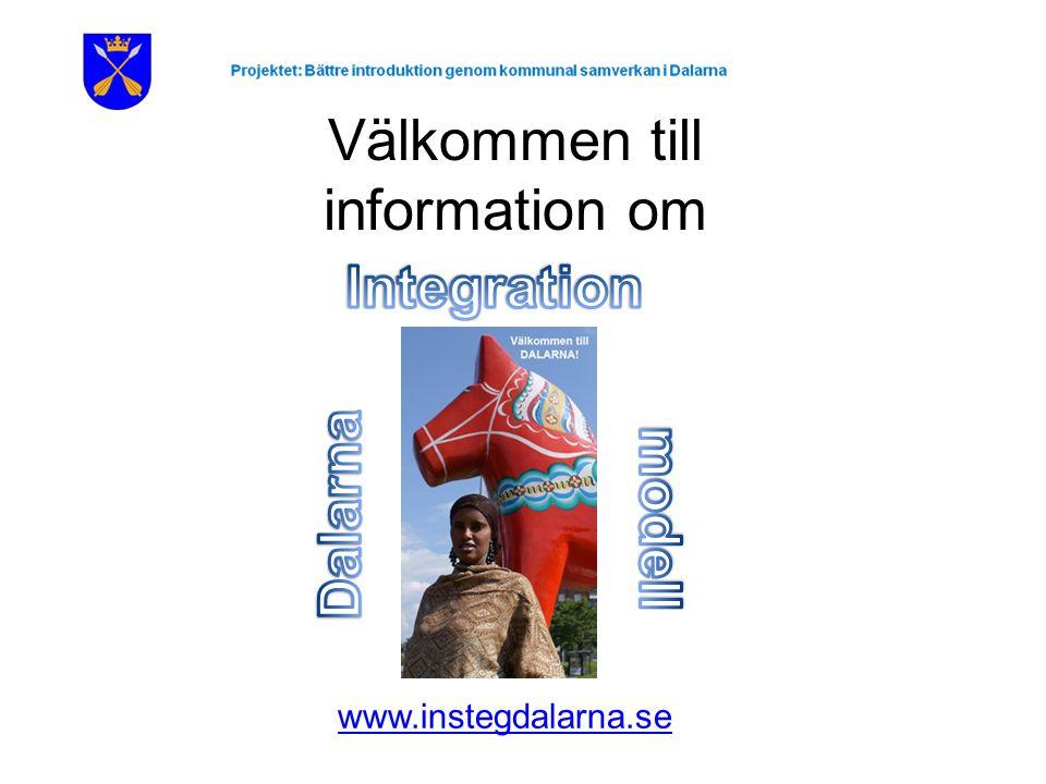 Välkommen till information om www.instegdalarna.se