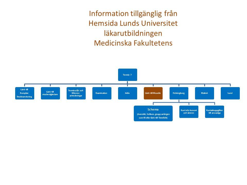 Termin 7 Länk till Kursplan Studieanvisning Länk till studievägledare Terminsråd och Minnes- anteckningar ExaminationArkivLänk till MoodleHelsingborg