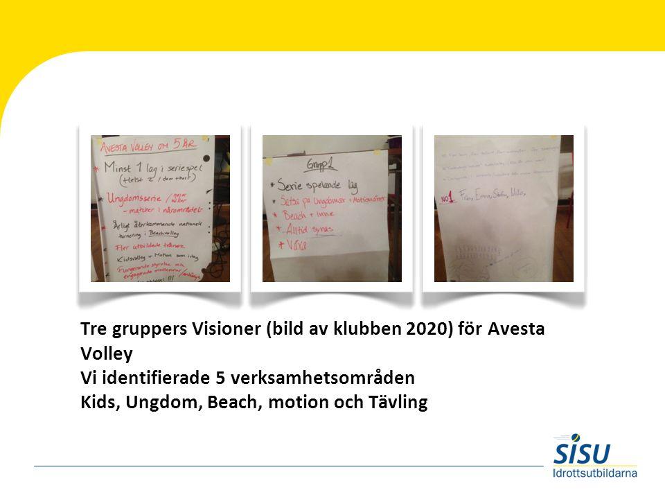 Tre gruppers Visioner (bild av klubben 2020) för Avesta Volley Vi identifierade 5 verksamhetsområden Kids, Ungdom, Beach, motion och Tävling