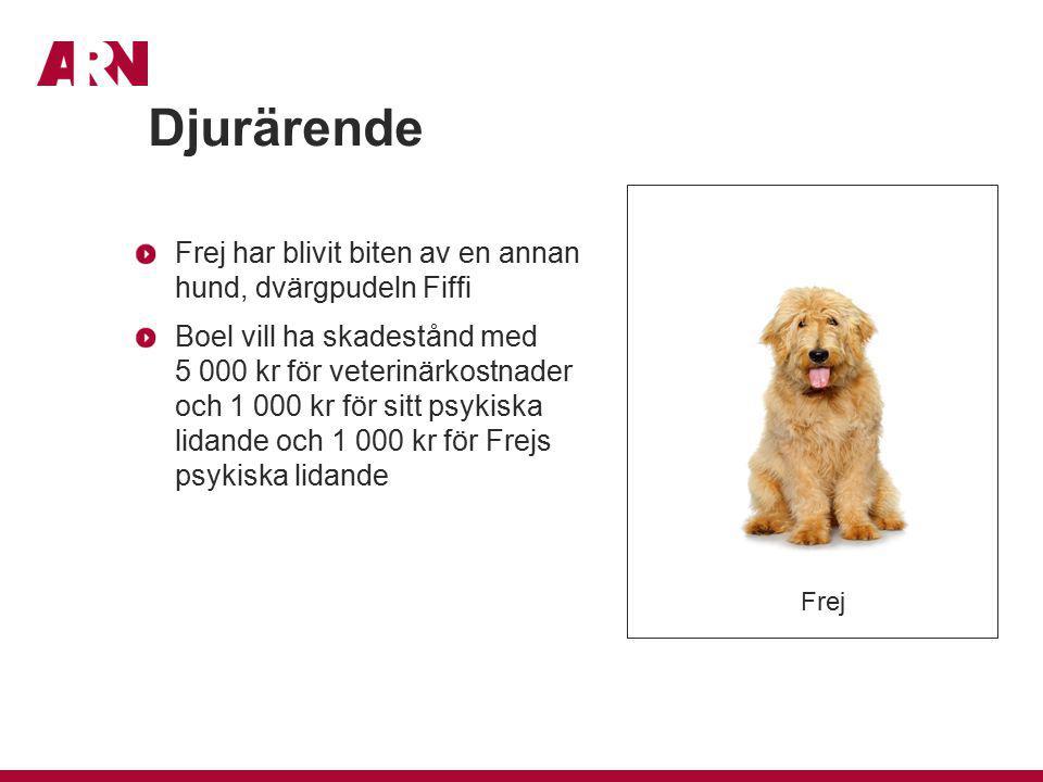 Frej har blivit biten av en annan hund, dvärgpudeln Fiffi Boel vill ha skadestånd med 5 000 kr för veterinärkostnader och 1 000 kr för sitt psykiska l