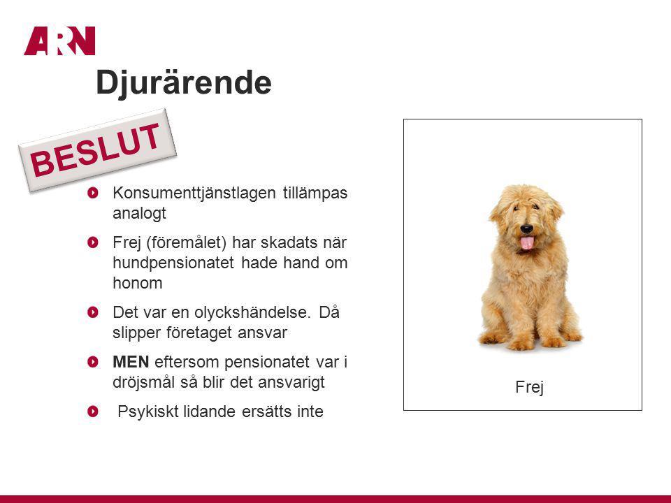 Konsumenttjänstlagen tillämpas analogt Frej (föremålet) har skadats när hundpensionatet hade hand om honom Det var en olyckshändelse. Då slipper föret