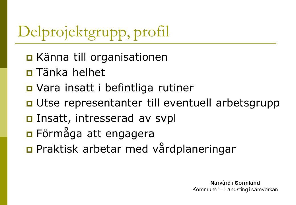 Delprojektgrupp, profil Närvård i Sörmland Kommuner – Landsting i samverkan  Känna till organisationen  Tänka helhet  Vara insatt i befintliga ruti