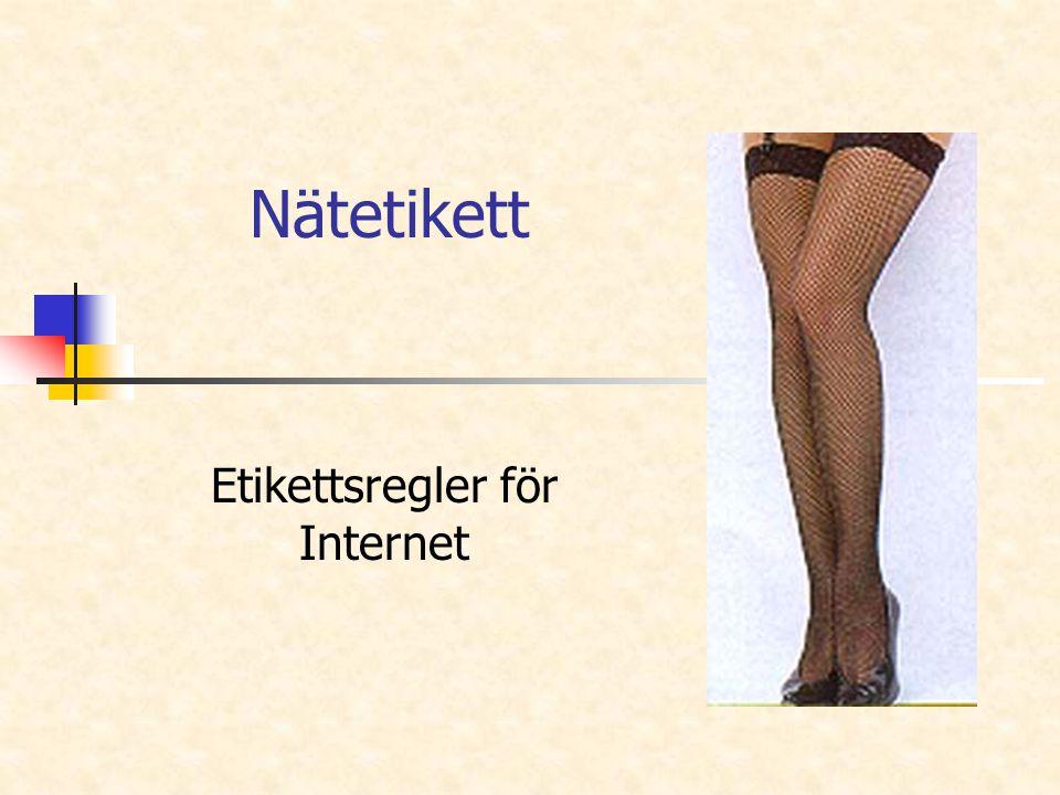 Nätetikett Etikettsregler för Internet