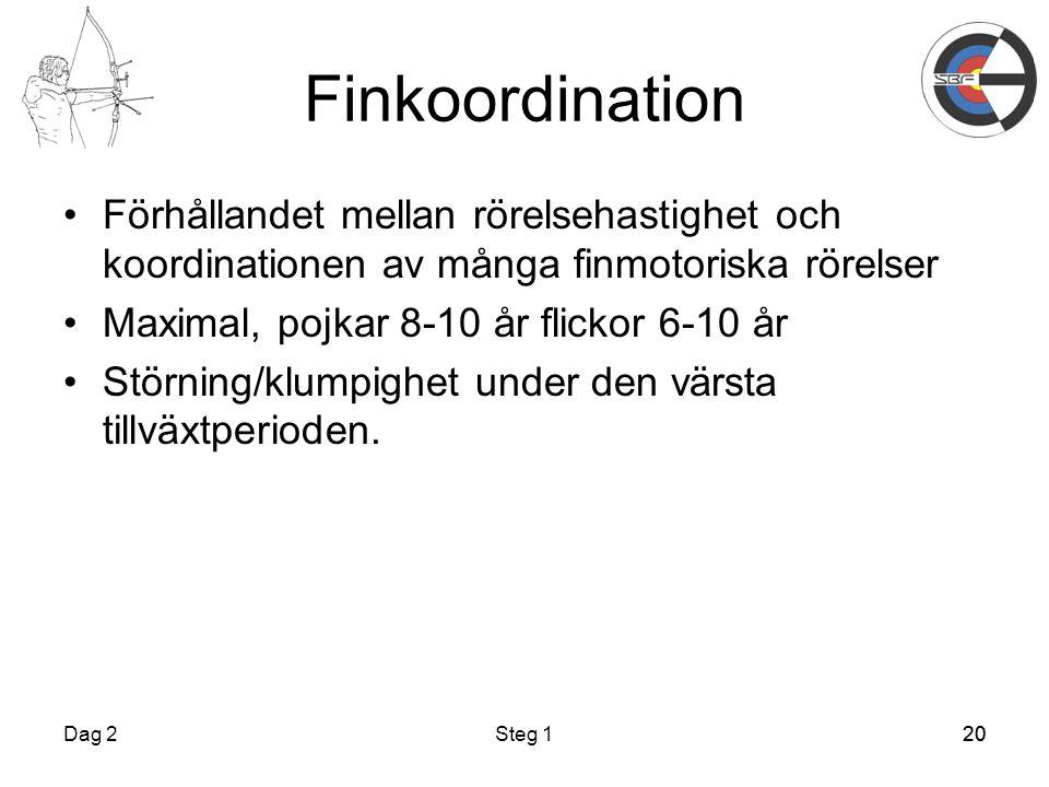 20 Finkoordination Dag 2Steg 120 Förhållandet mellan rörelsehastighet och koordinationen av många finmotoriska rörelser Maximal, pojkar 8-10 år flickor 6-10 år Störning/klumpighet under den värsta tillväxtperioden.