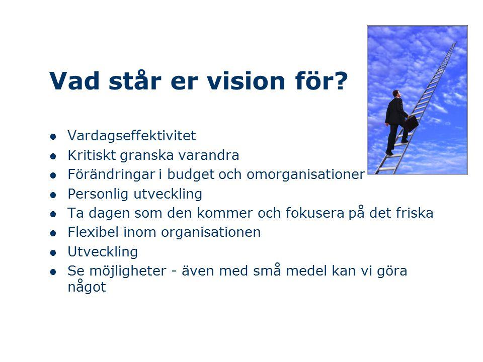 Vad står er vision för? Vardagseffektivitet Kritiskt granska varandra Förändringar i budget och omorganisationer Personlig utveckling Ta dagen som den