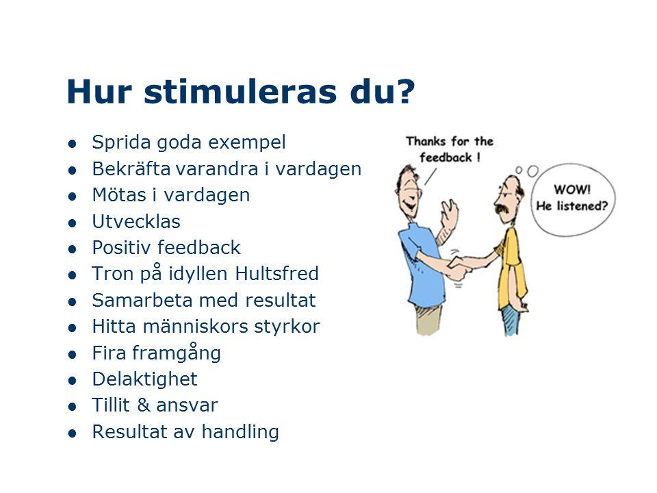 Hur stimuleras du? Sprida goda exempel Bekräfta varandra i vardagen Mötas i vardagen Utvecklas Positiv feedback Tron på idyllen Hultsfred Samarbeta me