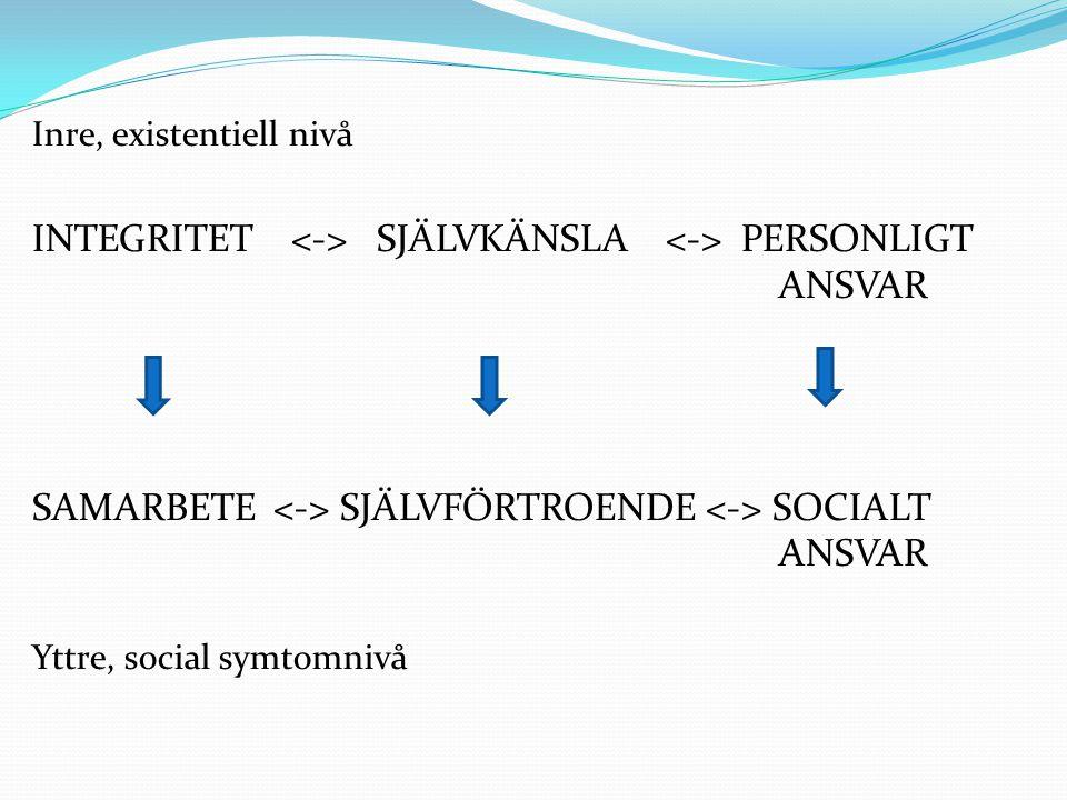 Inre, existentiell nivå INTEGRITET SJÄLVKÄNSLA PERSONLIGT ANSVAR SAMARBETE SJÄLVFÖRTROENDE SOCIALT ANSVAR Yttre, social symtomnivå