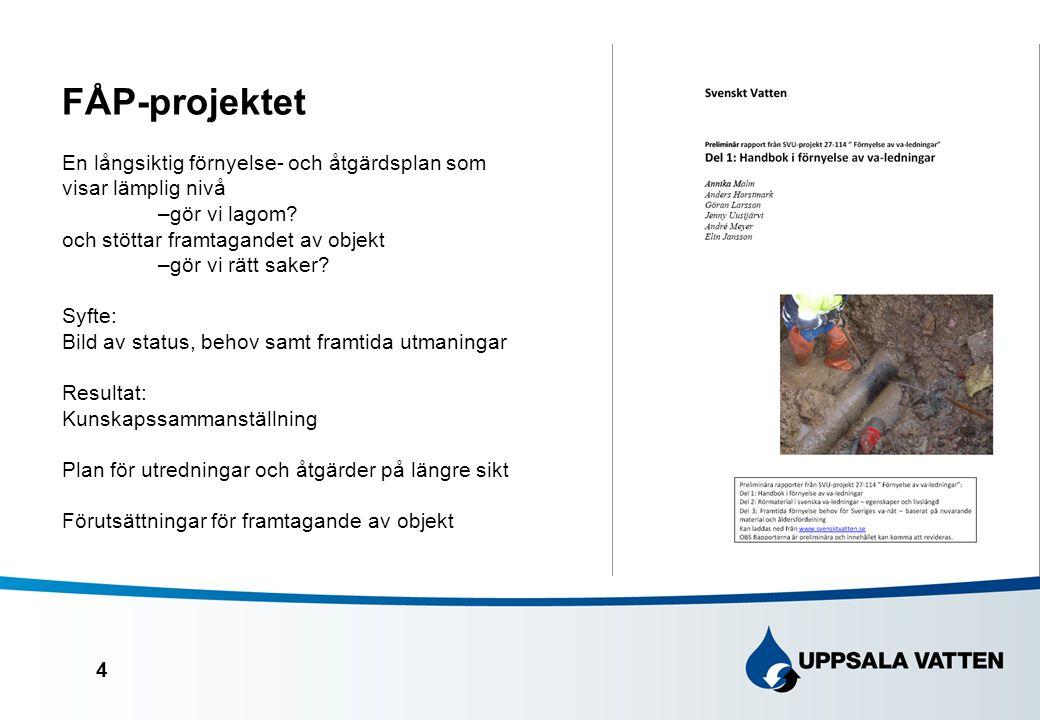 4 FÅP-projektet En långsiktig förnyelse- och åtgärdsplan som visar lämplig nivå –gör vi lagom.