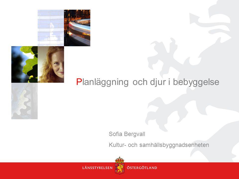 Planläggning och djur i bebyggelse Sofia Bergvall Kultur- och samhällsbyggnadsenheten
