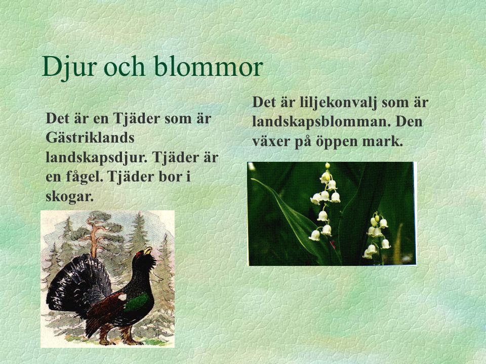 Djur och blommor Det är en Tjäder som är Gästriklands landskapsdjur. Tjäder är en fågel. Tjäder bor i skogar. Det är liljekonvalj som är landskapsblom
