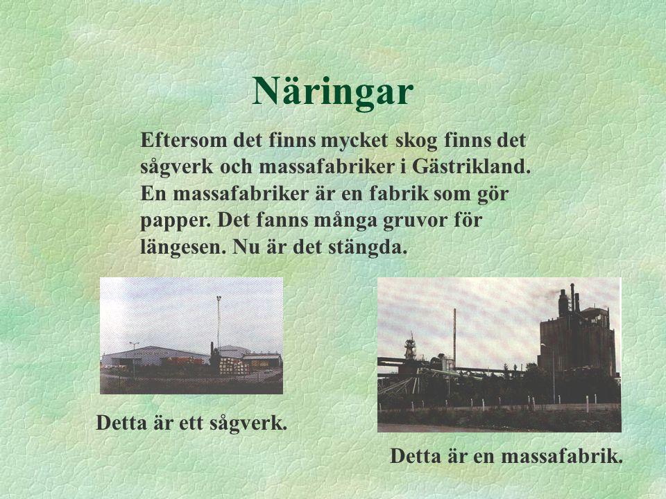 Näringar Eftersom det finns mycket skog finns det sågverk och massafabriker i Gästrikland. En massafabriker är en fabrik som gör papper. Det fanns mån