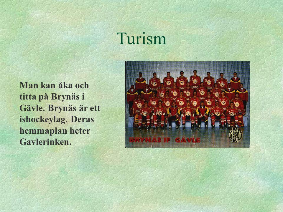 Turism Man kan åka och titta på Brynäs i Gävle. Brynäs är ett ishockeylag. Deras hemmaplan heter Gavlerinken.