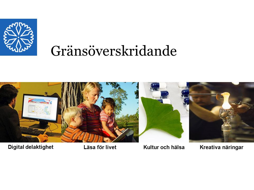 Landstinget i Östergötland Digital delaktighet Läsa för livet Kultur och hälsa Kreativa näringar Gränsöverskridande