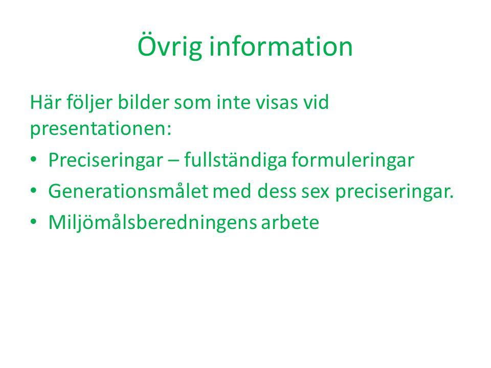 Övrig information Här följer bilder som inte visas vid presentationen: Preciseringar – fullständiga formuleringar Generationsmålet med dess sex precis