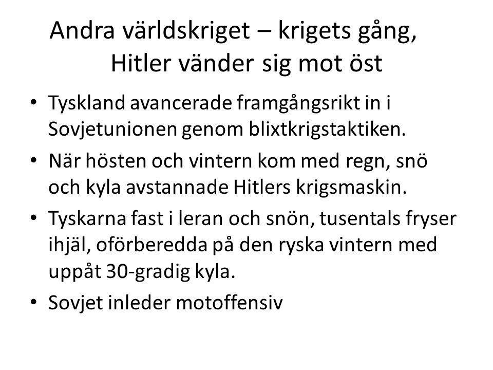 Andra världskriget – krigets gång, Hitler vänder sig mot öst Tyskland avancerade framgångsrikt in i Sovjetunionen genom blixtkrigstaktiken. När hösten