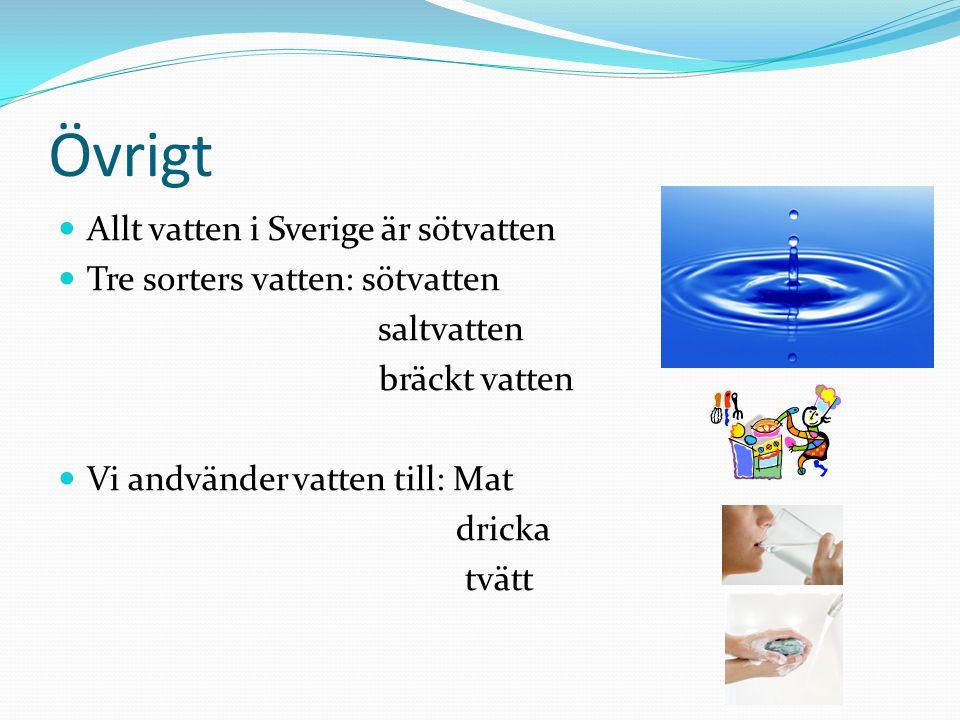 Övrigt Allt vatten i Sverige är sötvatten Tre sorters vatten: sötvatten saltvatten bräckt vatten Vi andvänder vatten till: Mat dricka tvätt