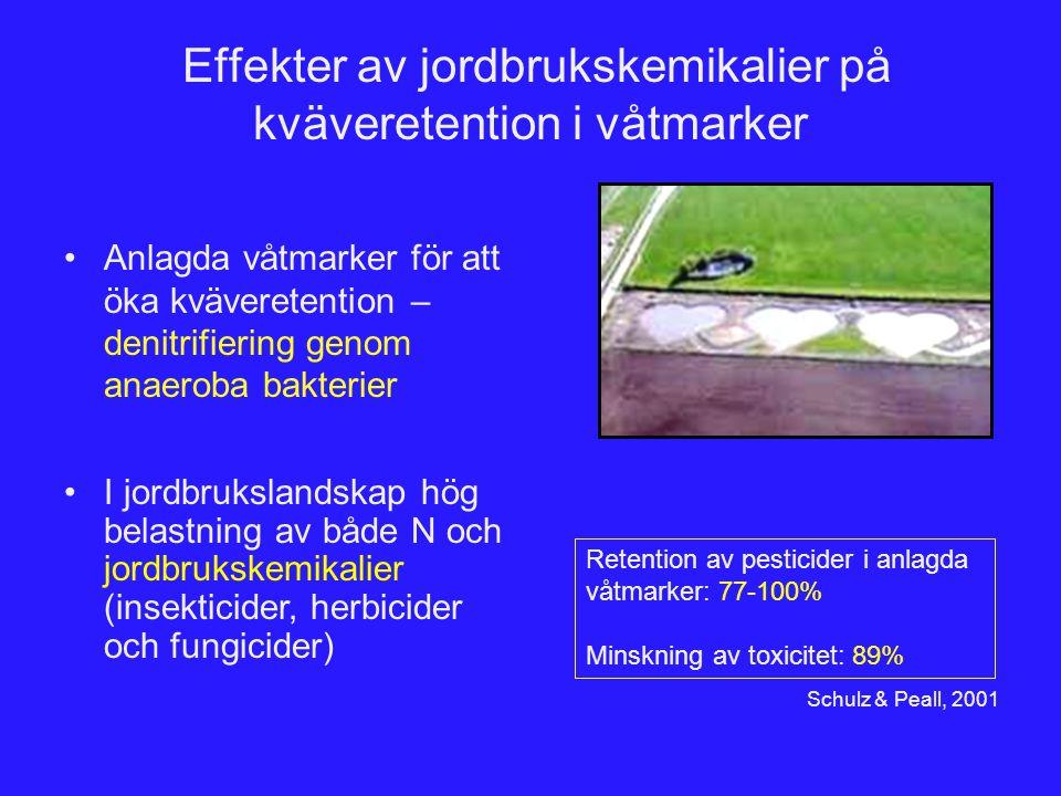 Effekter av jordbrukskemikalier på kväveretention i våtmarker Anlagda våtmarker för att öka kväveretention – denitrifiering genom anaeroba bakterier R